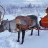 Поездка в Финляндию на Новый год