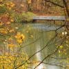 Осенняя элегия