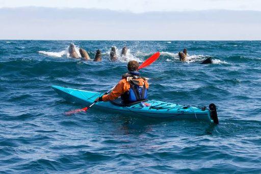 Экстремальный туризм. Морской каякинг