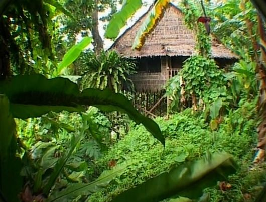 Нан-Мадол – тропический рай