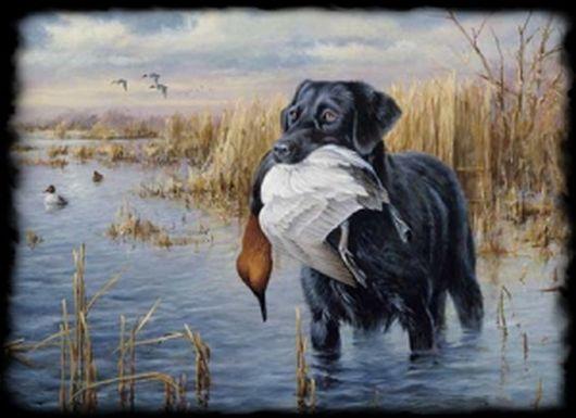 Картинки природы и охоты