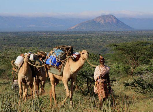 Открываем новые просторы для туризма и охоты