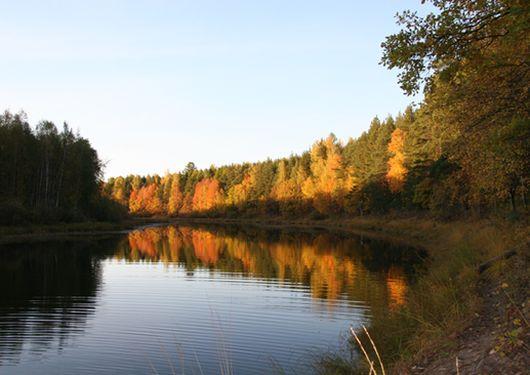 Дома отдыха в Нижегородской области