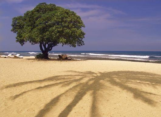 Пляжи Болгарии
