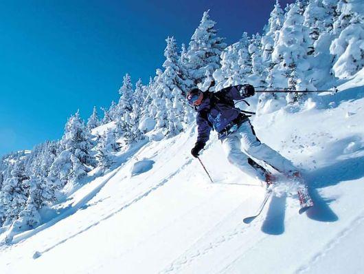 Грамотный выбор горных лыж
