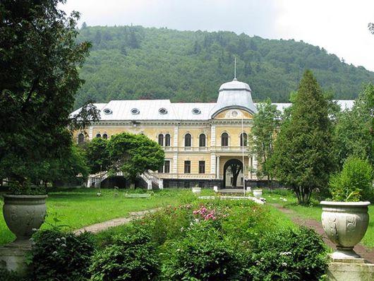 Дворец в Сколе