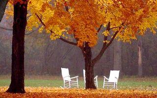 Куда поехать отдыхать осенью: Condé Nast Traveller- ваш путеводитель по странам