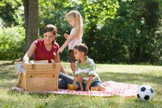 Первая помощь на пикнике