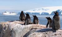 Антарктида без ледяного панциря, ч. IV