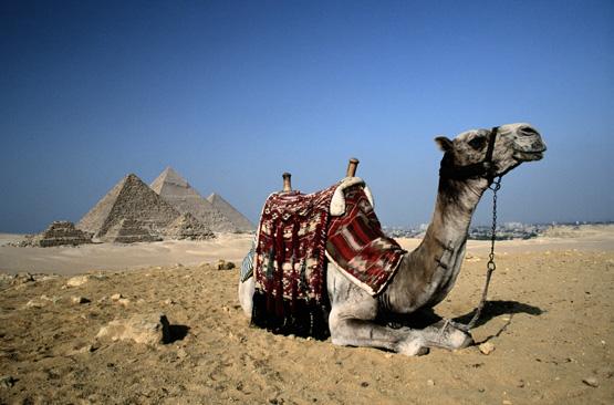 Отдыхать – в Египте!
