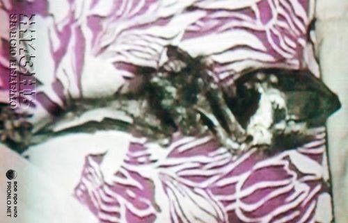 Кыштымский карлик, ч. II