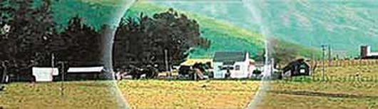 «Адское ранчо» Терри Шермана, ч. IV