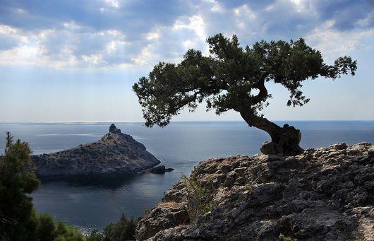 Почему надо отдыхать в Крыму